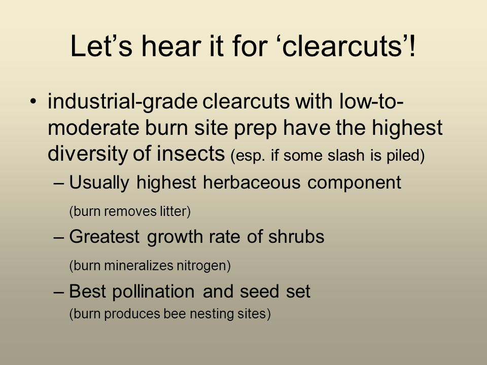 Lets hear it for clearcuts! industrial-grade clearcuts with low-to- moderate burn site prep have the highest diversity of insects (esp. if some slash