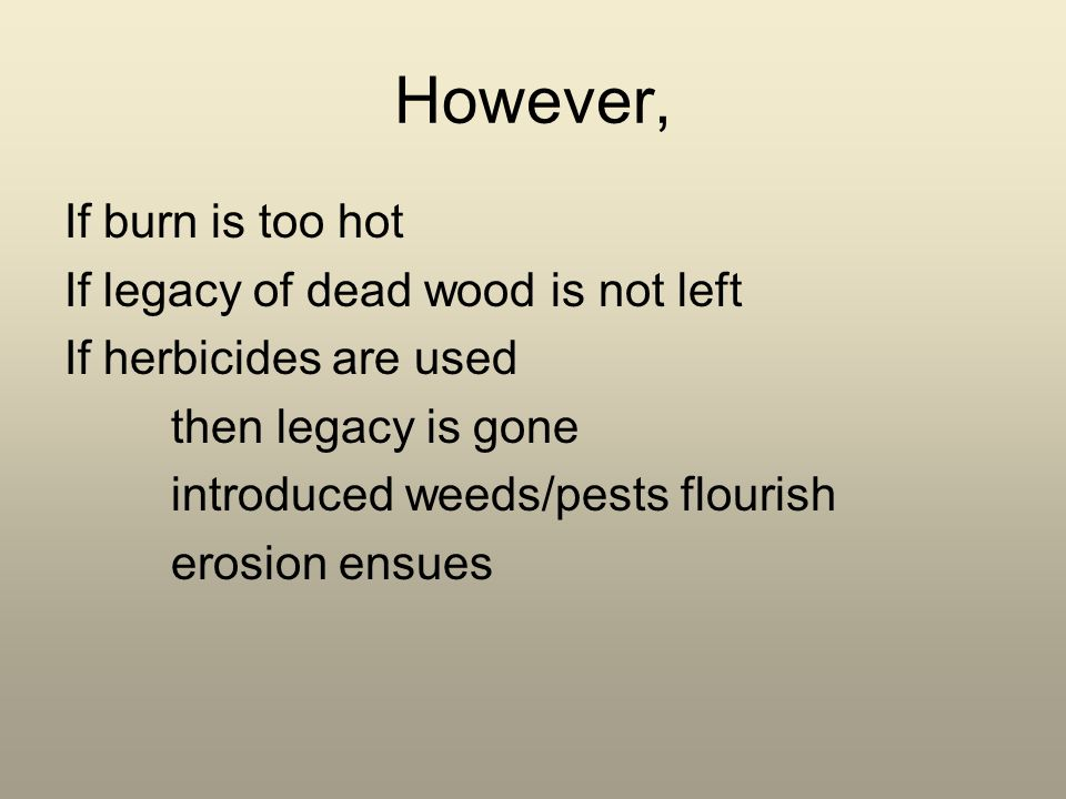 However, If burn is too hot If legacy of dead wood is not left If herbicides are used then legacy is gone introduced weeds/pests flourish erosion ensues