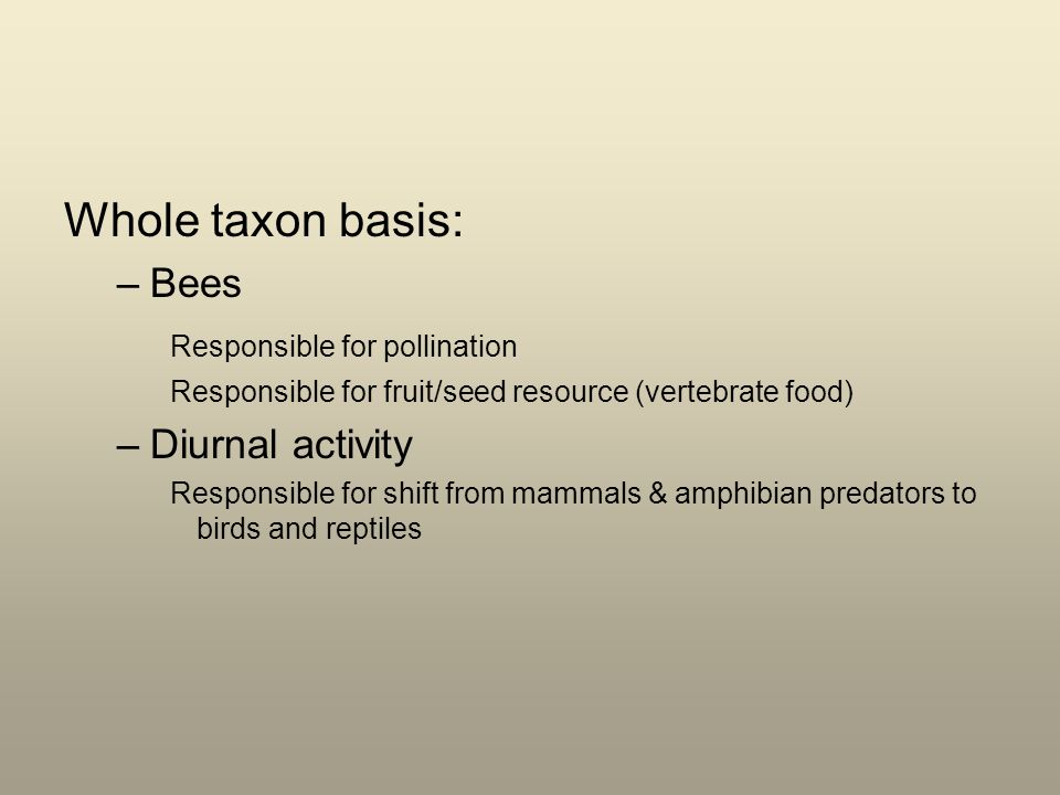 Whole taxon basis: –Bees Responsible for pollination Responsible for fruit/seed resource (vertebrate food) –Diurnal activity Responsible for shift from mammals & amphibian predators to birds and reptiles