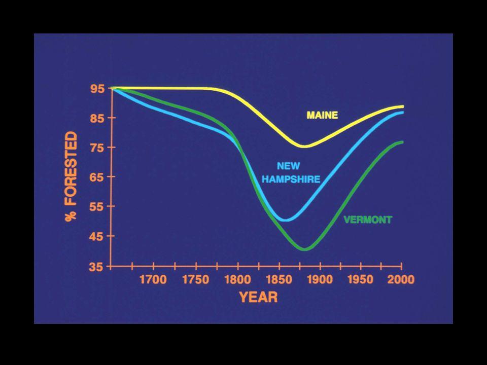 DESCRIBING HABITAT DISTURBANCES SizeFrequencyIntensity