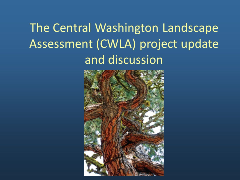Project Objectives – Create Consistent GIS Data Existing vegetation