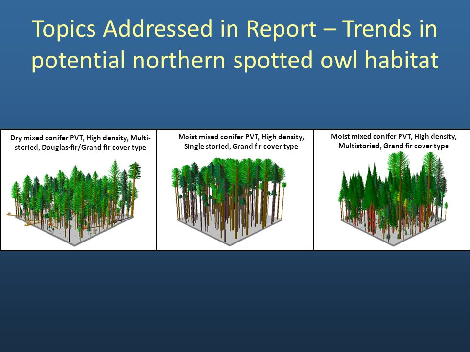 Topics Addressed in Report – Trends in potential northern spotted owl habitat Dry mixed conifer PVT, High density, Multi- storied, Douglas-fir/Grand f