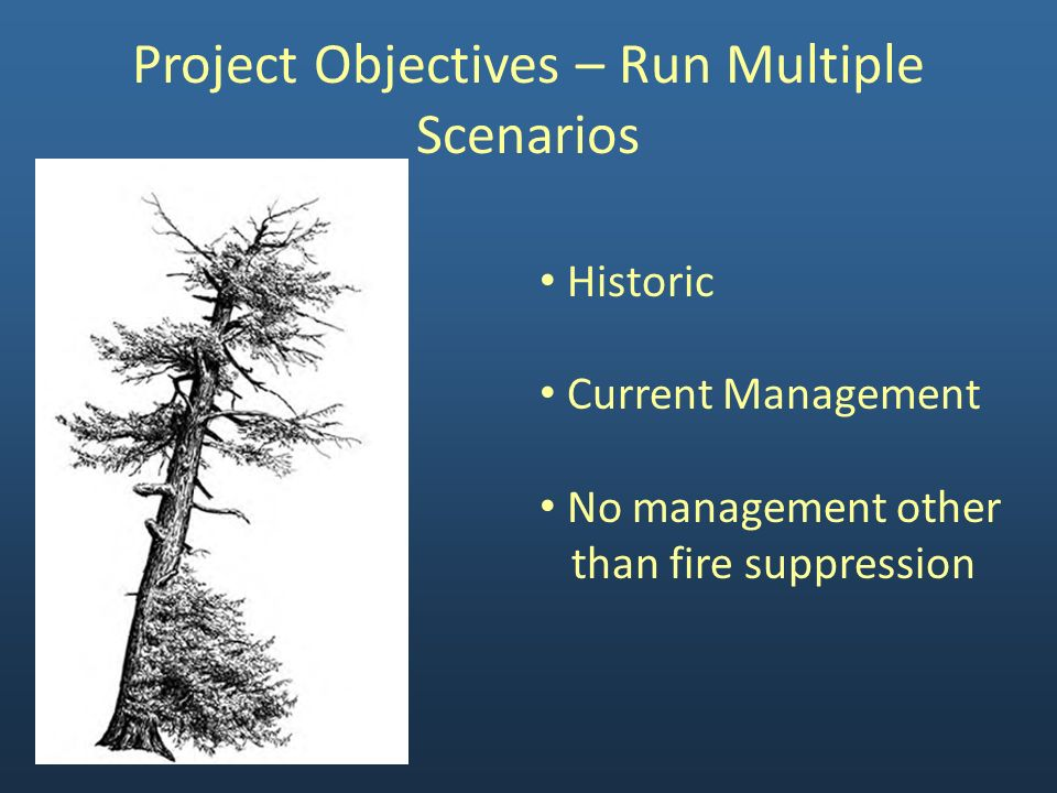 Project Objectives – Run Multiple Scenarios Historic Current Management No management other than fire suppression