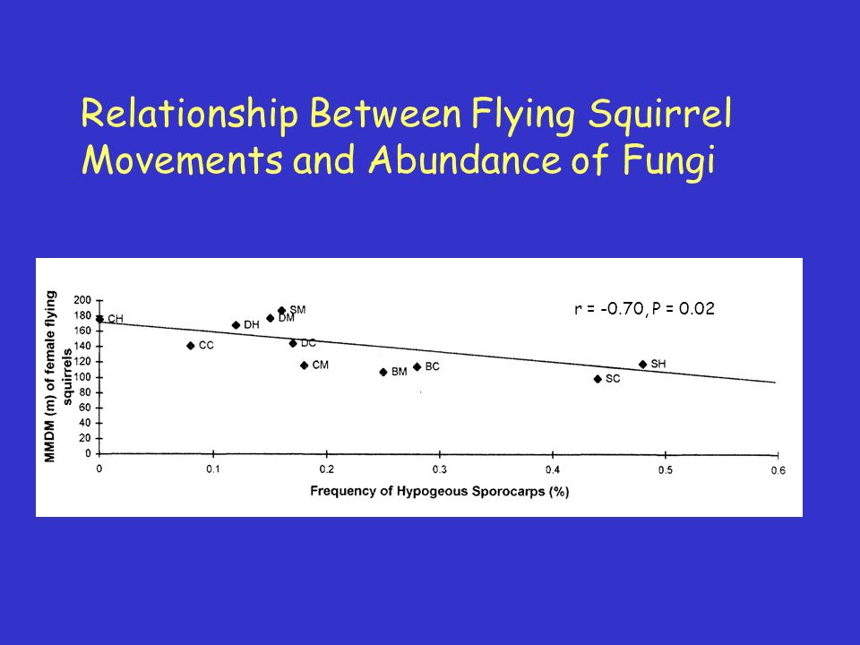 Relationship Between Flying Squirrel Movements and Abundance of Fungi r = -0.70, P = 0.02