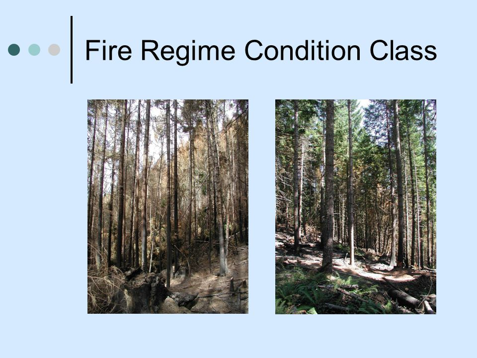 Fire Regime Condition Class