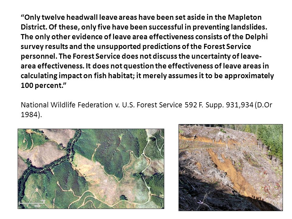 Only twelve headwall leave areas have been set aside in the Mapleton District. Of these, only five have been successful in preventing landslides. The