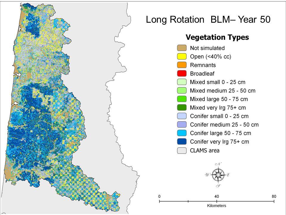 Long Rotation BLM– Year 50