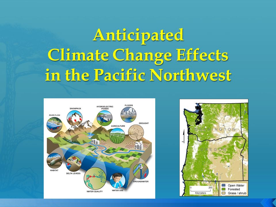 Beverly Law and students, Oregon State University Ron Neilson and MAPSS team, Pacific Northwest Research Station Climate Impacts Group, University of Washington Chris Ringo, ecology tech team