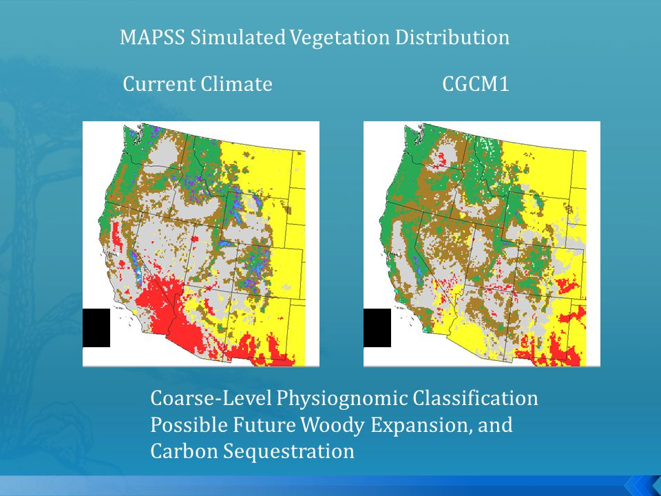 Current ClimateCGCM1 MAPSS Simulated Vegetation Distribution Coarse-Level Physiognomic Classification Possible Future Woody Expansion, and Carbon Sequ