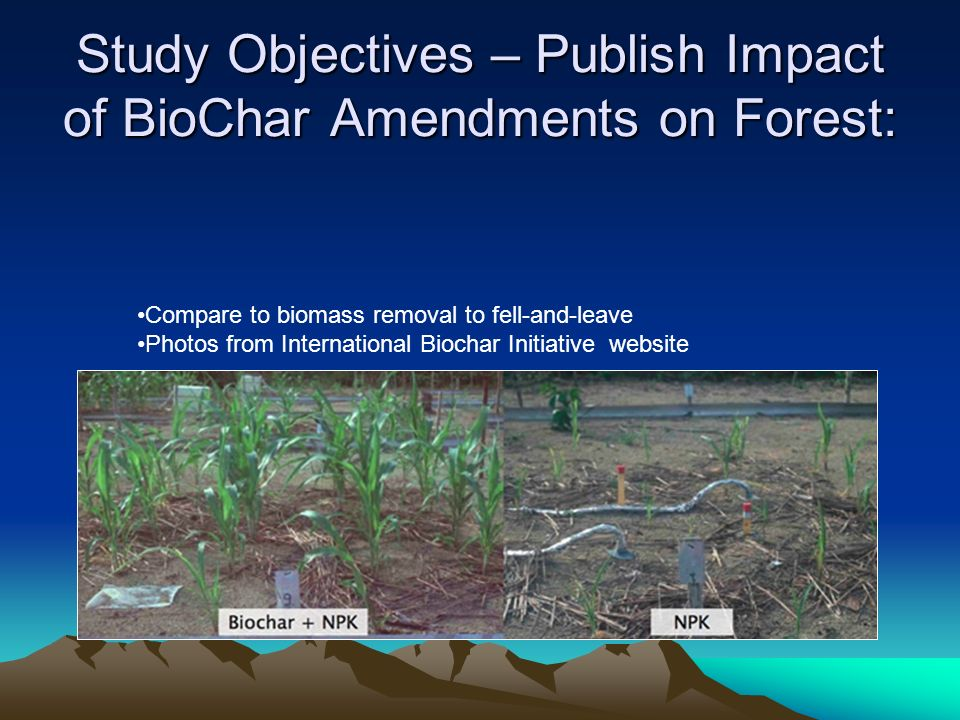 Study Objectives – Publish Impact of BioChar Amendments on Forest: Compare to biomass removal to fell-and-leave Photos from International Biochar Initiative website