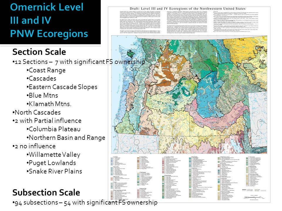 Section Scale 12 Sections – 7 with significant FS ownership Coast Range Cascades Eastern Cascade Slopes Blue Mtns Klamath Mtns.