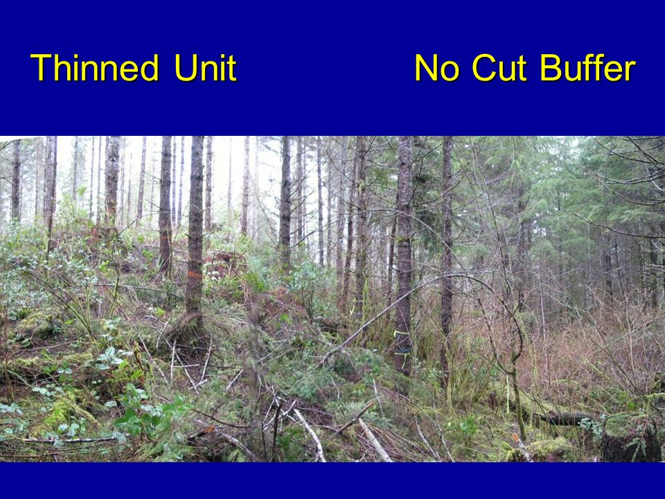 Thinned Unit No Cut Buffer