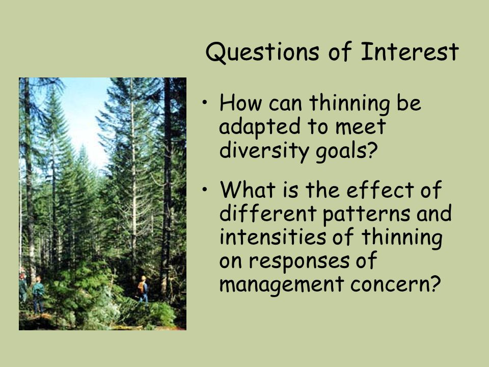 Questions of Interest How can thinning be adapted to meet diversity goals.