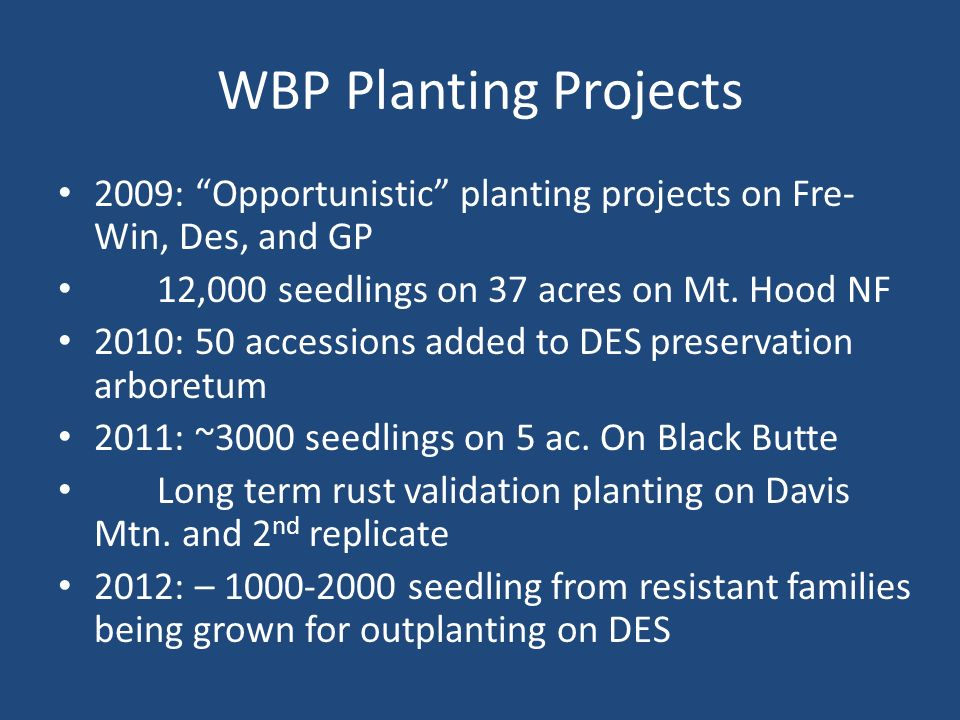 WBP Planting Projects 2009: Opportunistic planting projects on Fre- Win, Des, and GP 12,000 seedlings on 37 acres on Mt.