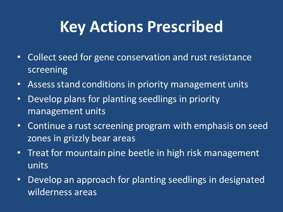 Key Actions Prescribed Collect seed for gene conservation and rust resistance screening Assess stand conditions in priority management units Develop plans for planting seedlings in priority management units Continue a rust screening program with emphasis on seed zones in grizzly bear areas Treat for mountain pine beetle in high risk management units Develop an approach for planting seedlings in designated wilderness areas