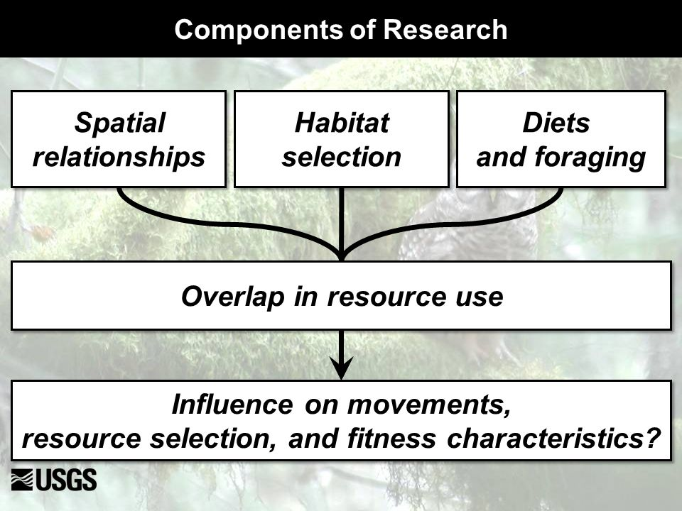 Spatial relationships Spatial relationships Habitat selection Habitat selection Diets and foraging Diets and foraging Overlap in resource use Influenc