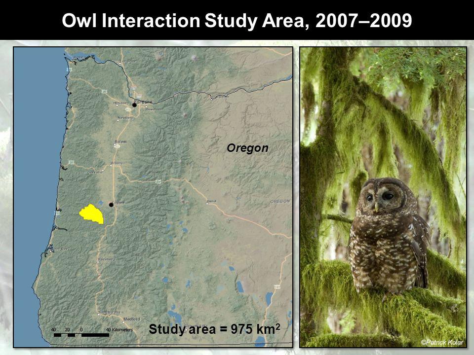 Owl Interaction Study Area, 2007–2009 Kolar Oregon Study area = 975 km 2 ©Patrick Kolar