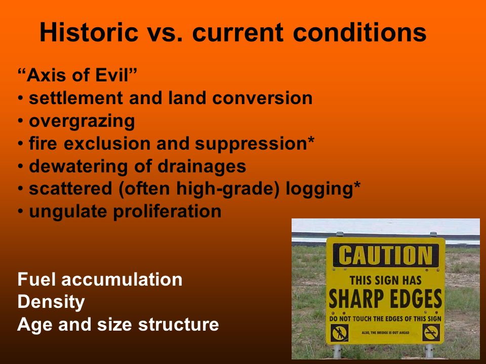 Historic vs. current conditions Axis of Evil settlement and land conversion overgrazing fire exclusion and suppression* dewatering of drainages scatte