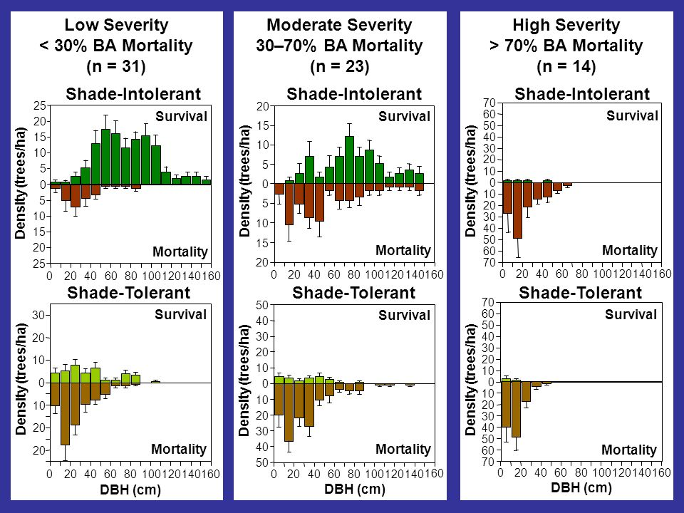 Low Severity < 30% BA Mortality (n = 31) Density (trees/ha) Survival Mortality Shade-Intolerant Shade-Tolerant DBH (cm) Survival Mortality Density (trees/ha) Moderate Severity 30–70% BA Mortality (n = 23) Density (trees/ha) Survival Mortality Shade-Intolerant DBH (cm) Density (trees/ha) Survival Mortality Shade-Tolerant High Severity > 70% BA Mortality (n = 14) DBH (cm) Survival Mortality Density (trees/ha) Shade-Tolerant Density (trees/ha) Survival Mortality Shade-Intolerant