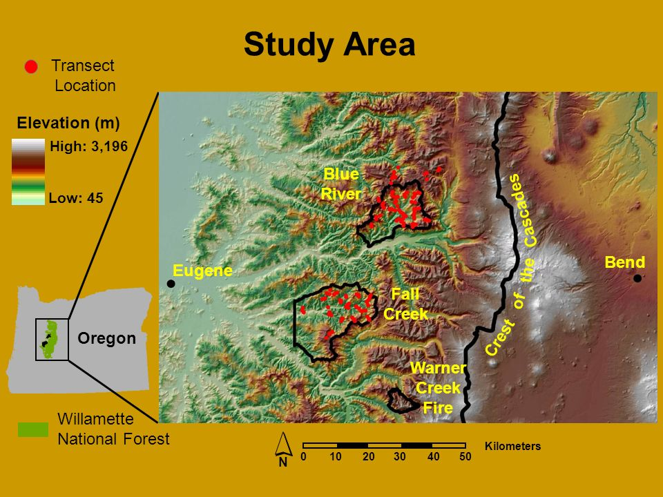 Elevation (m) High: 3,196 Low: 45 Transect Location Willamette National Forest Study Area N Kilometers 2040 Oregon Eugene Bend Fall Creek Blue River Crest of the Cascades Warner Creek Fire