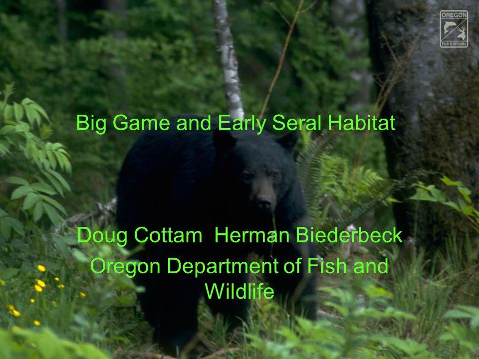 Big Game Bears, cougars, deer, elk. Cougars deer, elk. Brief details on bears.