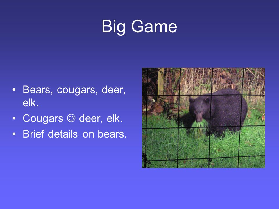 Big Game Bears, cougars, deer, elk. Cougars deer, elk. Brief details on bears.