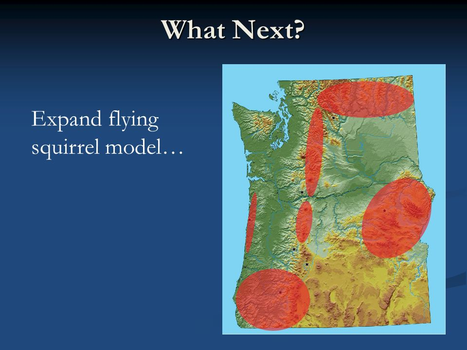 What Next? Expand flying squirrel model…