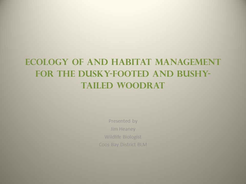 Ecology of and Habitat Management for the Dusky-Footed and Bushy- Tailed Woodrat Presented by Jim Heaney Wildlife Biologist Coos Bay District BLM