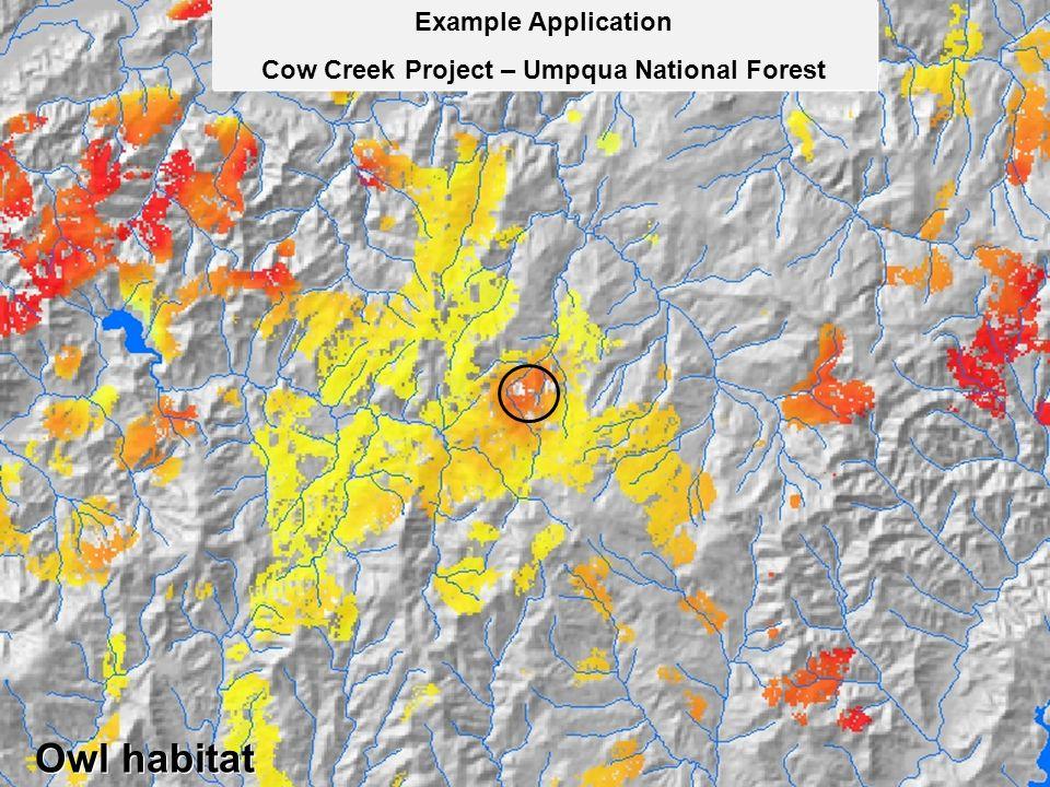 Example Application Cow Creek Project – Umpqua National Forest Example Application Cow Creek Project – Umpqua National Forest Owl habitat
