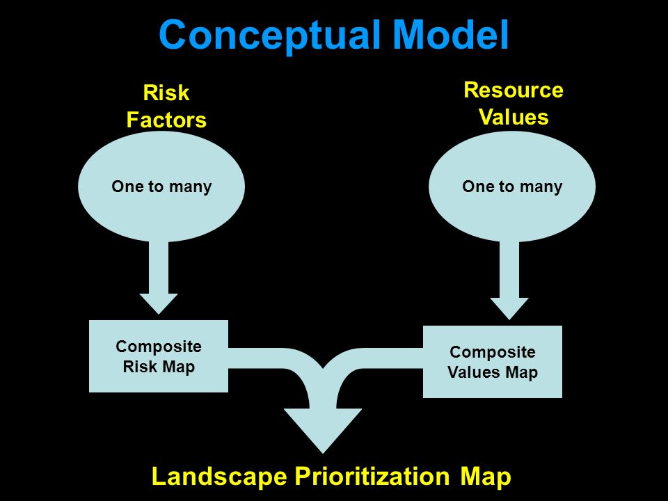 Conceptual Model One to many Composite Risk Map Composite Values Map Landscape Prioritization Map Risk Factors One to many Resource Values