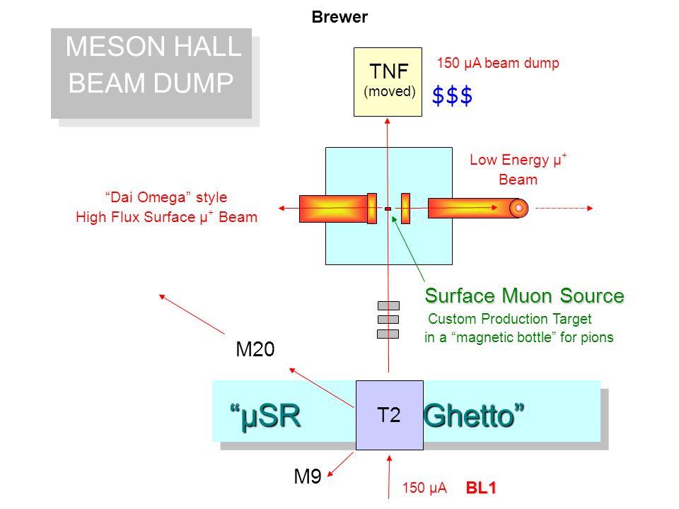 µSR Ghetto µSR Ghetto MESON HALL BEAM DUMP MESON HALL BEAM DUMP 150 µA beam dump BL1 Surface Muon Source Custom Production Target in a magnetic bottle