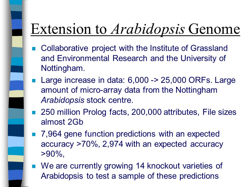 Extension to Arabidopsis Genome n Collaborative project with the Institute of Grassland and Environmental Research and the University of Nottingham.