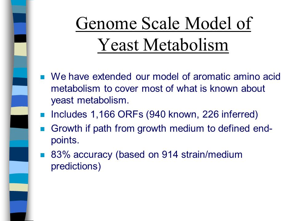 Genome Scale Model of Yeast Metabolism n We have extended our model of aromatic amino acid metabolism to cover most of what is known about yeast metabolism.