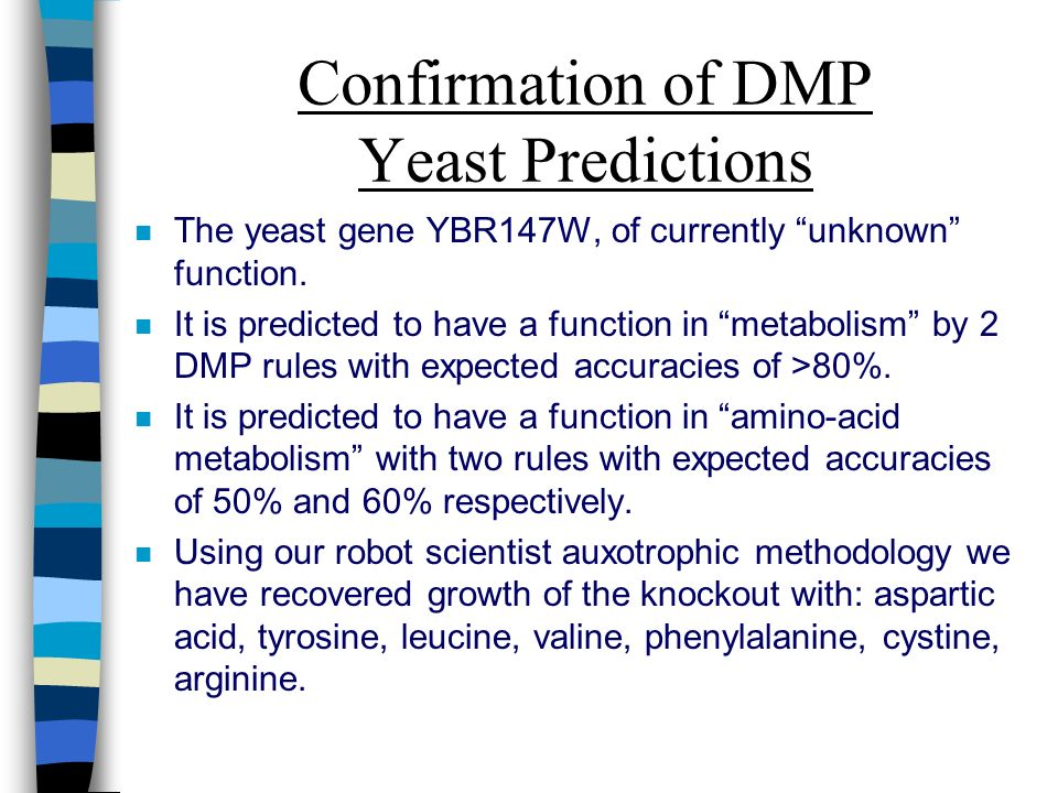Confirmation of DMP Yeast Predictions n The yeast gene YBR147W, of currently unknown function.