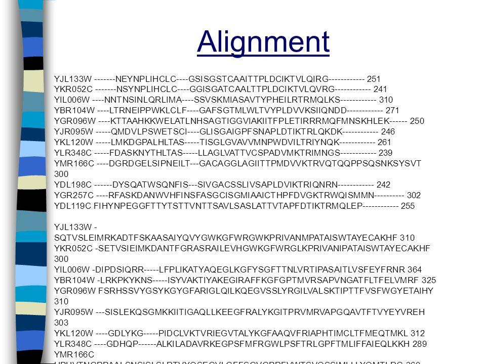 Alignment YJL133W -------NEYNPLIHCLC----GSISGSTCAAITTPLDCIKTVLQIRG------------ 251 YKR052C -------NSYNPLIHCLC----GGISGATCAALTTPLDCIKTVLQVRG-----------
