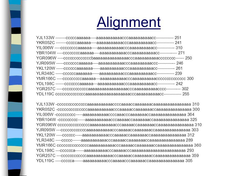 Alignment YJL133W -------cccccaaaaaa----aaaaaaaaaaacccaaaaaaaaaacc------------ 251 YKR052C -------cccccaaaaaa----aaaaaaaaaaacccaaaaaaaaaacc-----------