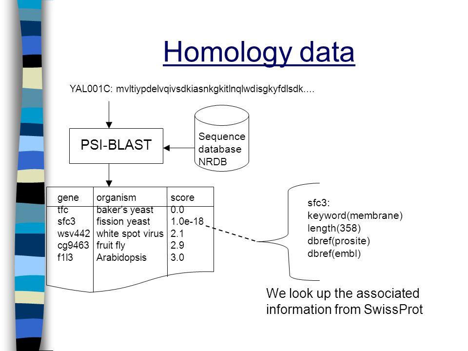 Homology data YAL001C: mvltiypdelvqivsdkiasnkgkitlnqlwdisgkyfdlsdk.... PSI-BLAST Sequence database NRDB sfc3: keyword(membrane) length(358) dbref(pros