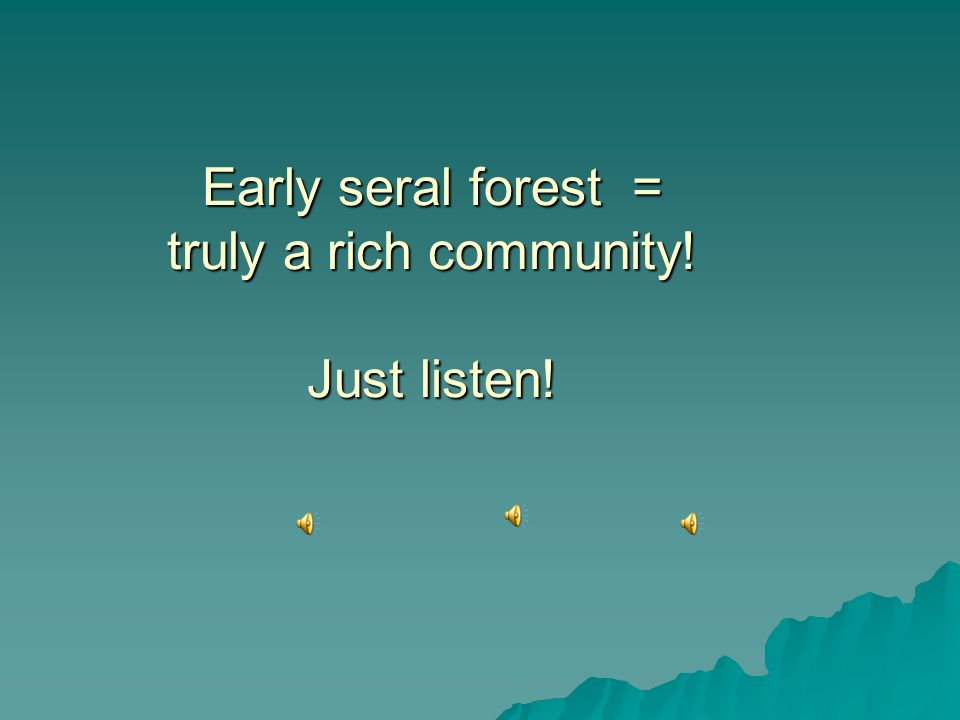 Early seral forest = truly a rich community! Just listen! Early seral forest = truly a rich community! Just listen!