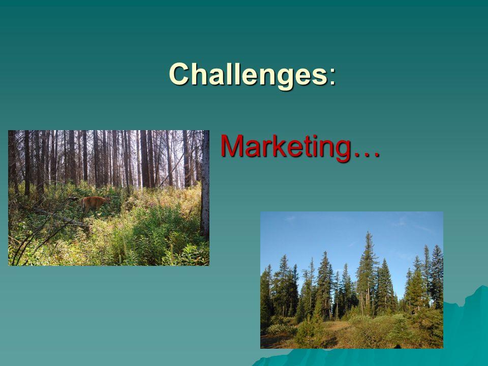 Challenges: Marketing…