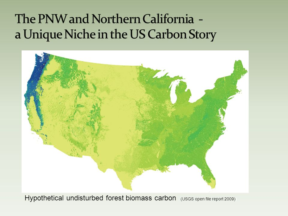 Hypothetical undisturbed forest biomass carbon (USGS open file report 2009))