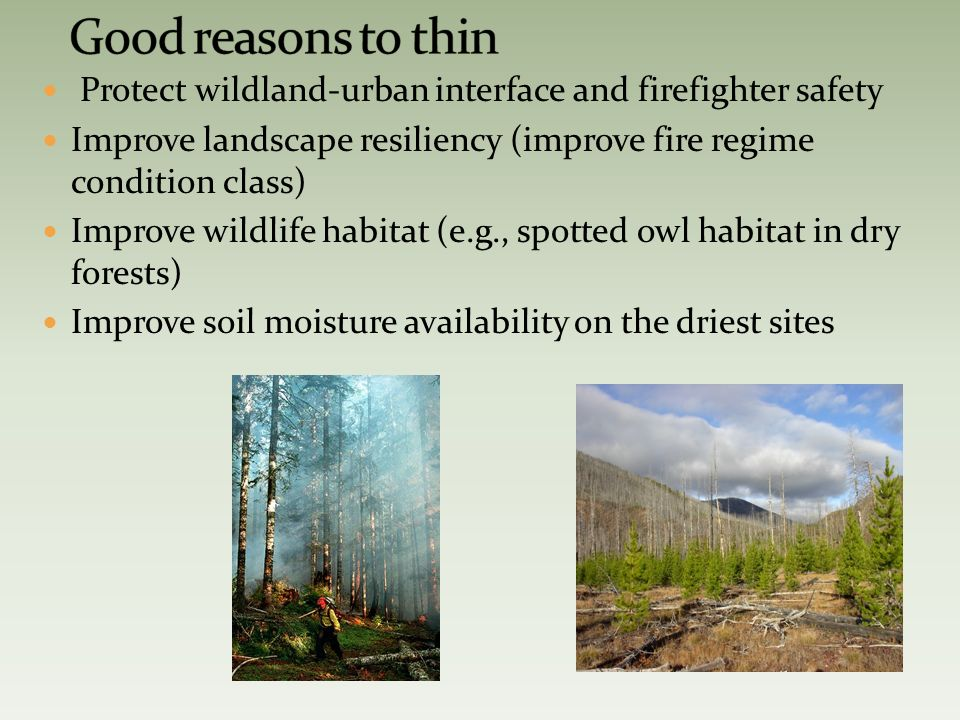 Protect wildland-urban interface and firefighter safety Improve landscape resiliency (improve fire regime condition class) Improve wildlife habitat (e.g., spotted owl habitat in dry forests) Improve soil moisture availability on the driest sites