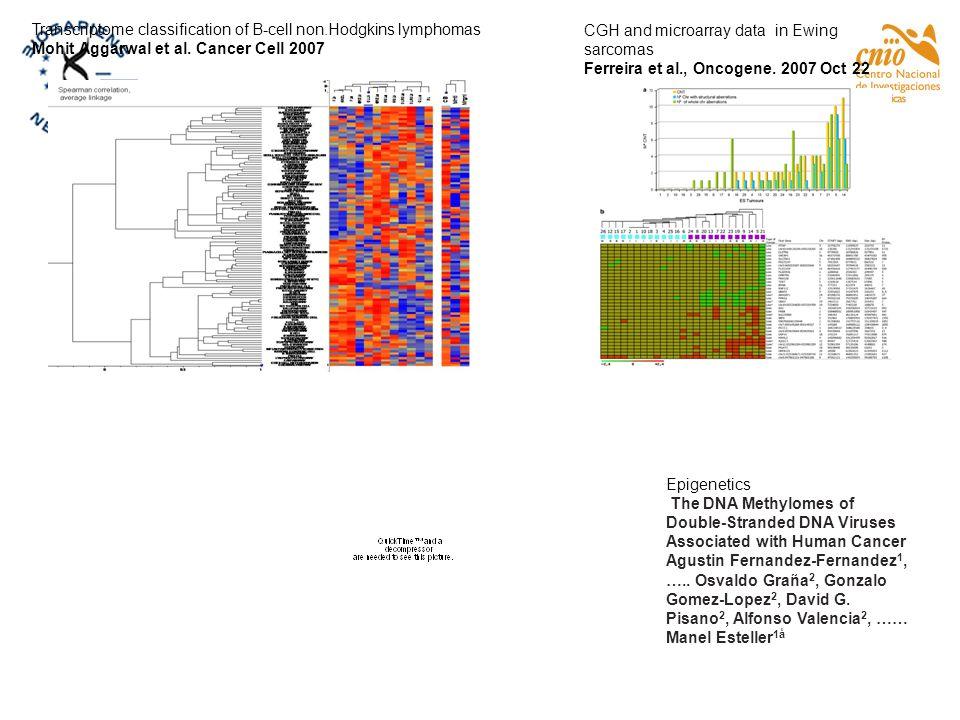 Transcriptome classification of B-cell non.Hodgkins lymphomas Mohit Aggarwal et al. Cancer Cell 2007 CGH and microarray data in Ewing sarcomas Ferreir