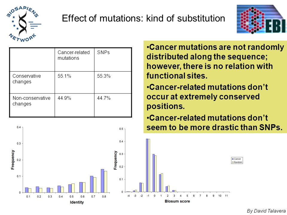 Effect of mutations: kind of substitution Cancer-related mutations SNPs Conservative changes 55.1%55.3% Non-conservative changes 44.9%44.7% By David T