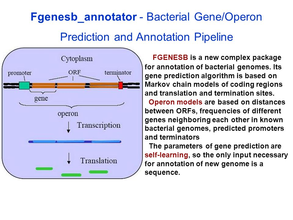 Fgenesb_annotator - Bacterial Gene/Operon Prediction and Annotation Pipeline FGENESB is a new complex package for annotation of bacterial genomes. Its