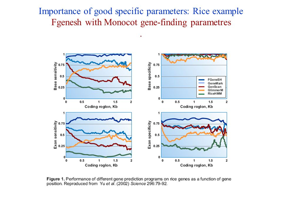 Importance of good specific parameters: Rice example Fgenesh with Monocot gene-finding parametres.