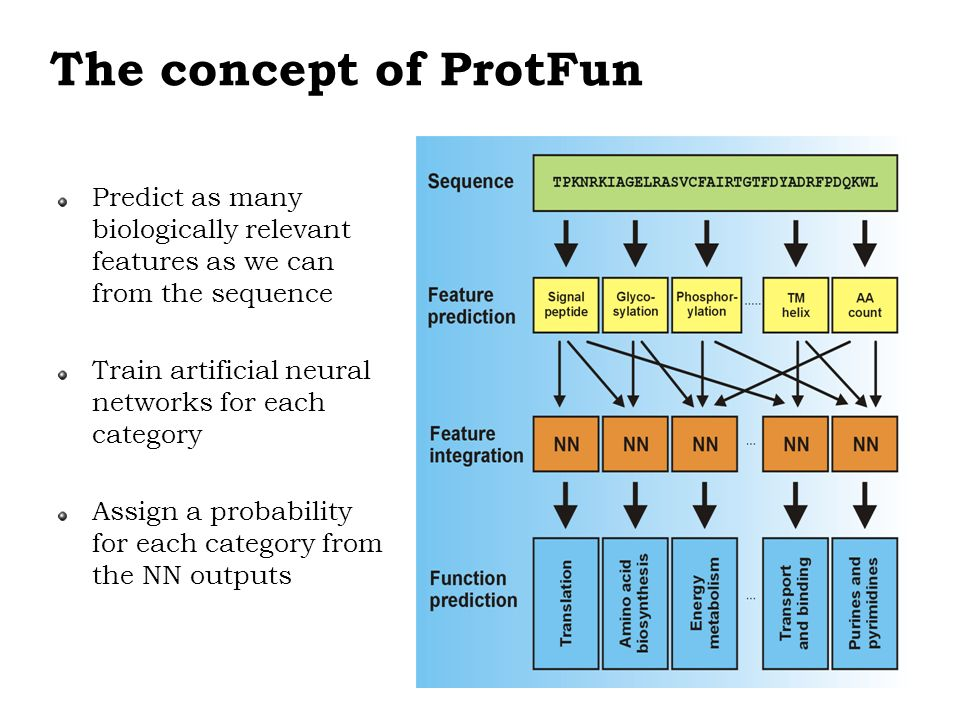 The concept of ProtFun Predict as many biologically relevant features as we can from the sequence Train artificial neural networks for each category A