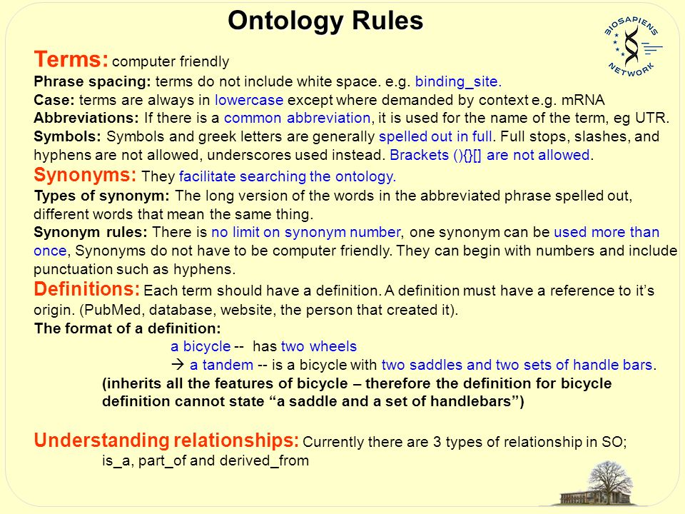 Ontology Rules Terms: computer friendly Phrase spacing: terms do not include white space.