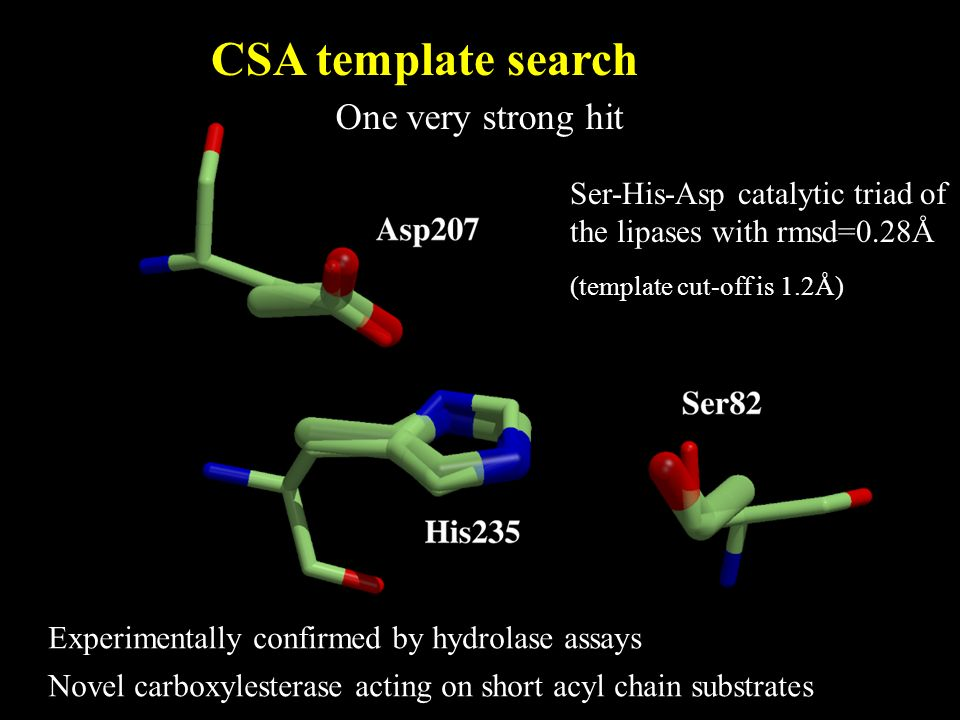 Ser-His-Asp catalytic triad of the lipases with rmsd=0.28Å (template cut-off is 1.2Å) CSA template search One very strong hit Experimentally confirmed by hydrolase assays Novel carboxylesterase acting on short acyl chain substrates