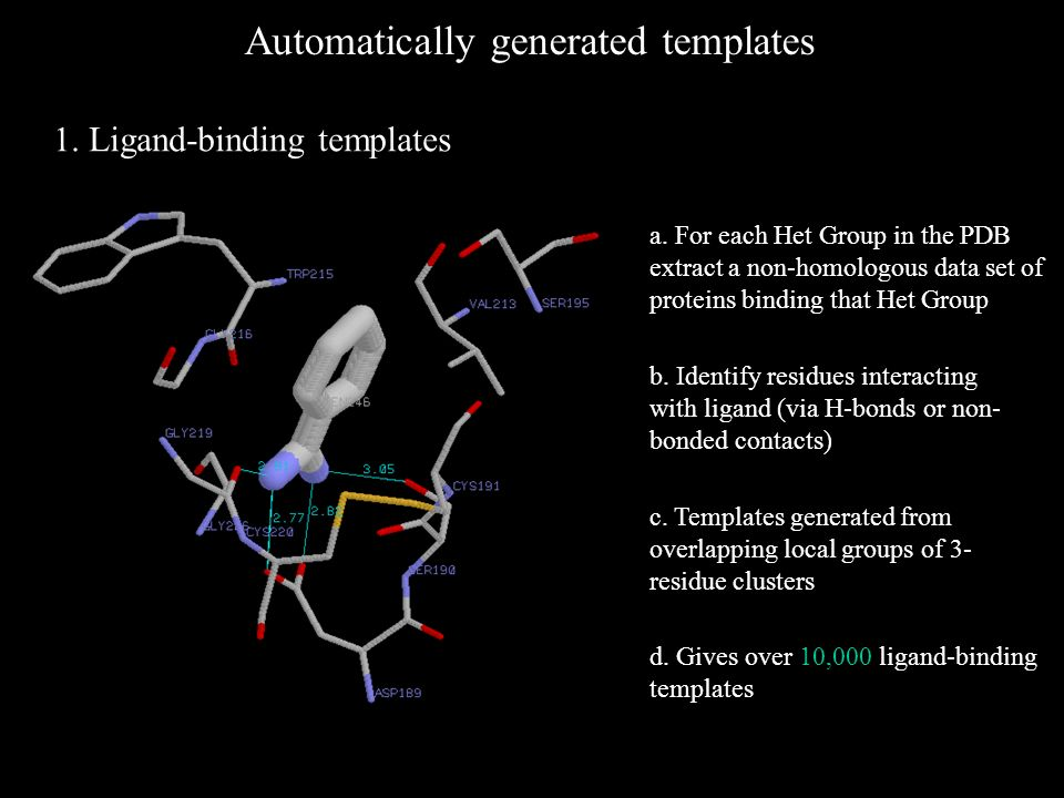 Automatically generated templates 1. Ligand-binding templates b.