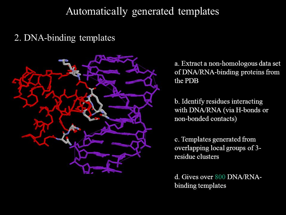 Automatically generated templates 2. DNA-binding templates b.